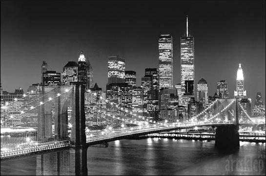 usa nowy york shop yarn meshine